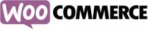 woocommerce ecommerce wesbite design