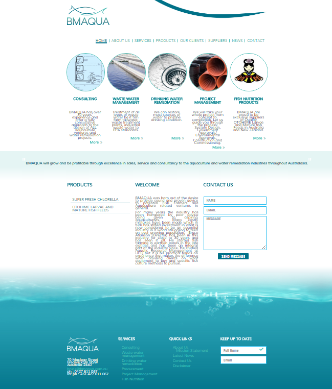 bm aqua wordpress website